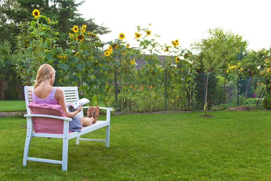 was ist bei holz im garten zu beachten. Black Bedroom Furniture Sets. Home Design Ideas